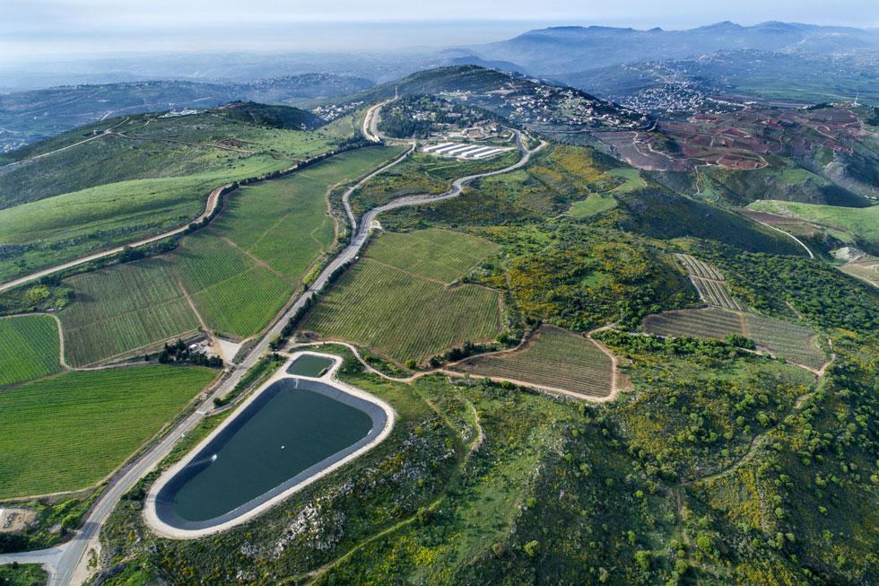 הכרמים של יקב הרי גליל, על גבול לבנון. ''הנופים האלה משקפים את האזור שבו הם נטועים'', אומר נחום, ''ומצד שני, את התערבות האדם בטבע'' (צילום: אילן נחום)