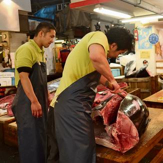 """דגי הטונה שהועברו לדוכנים נחתכים בסכין שאורכה כ־70 ס""""מ"""