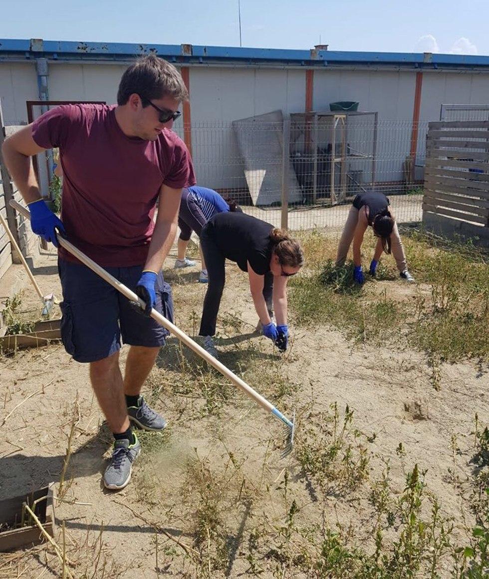 עובדי שגרירות ב בולגריה שיקום משקמים מכלאה ()