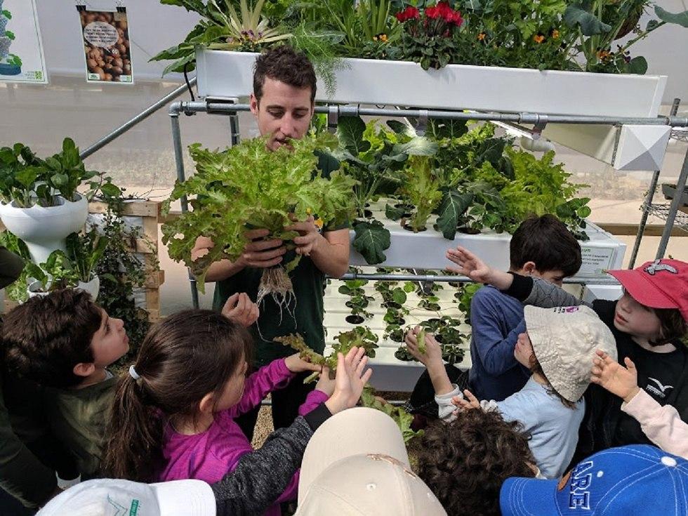 לביא קושילביץ וגידולים הידרופונים בעיר תל אביב (צילום: החברה לחקלאות עירונית )