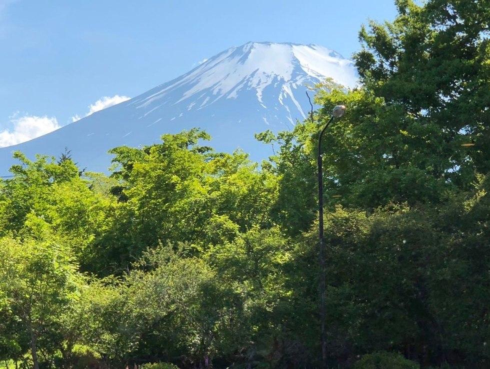 יפן (צילום: שגרירות ישראל ביפן)