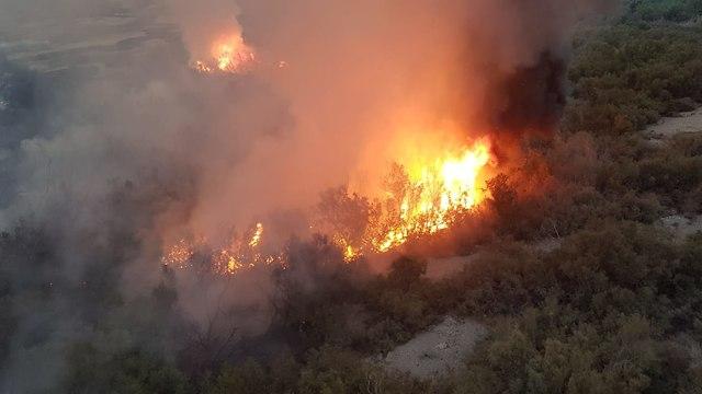 שריפה בשמורת הטבע עינות צוקים בים המלח (צילום: דוברות כב