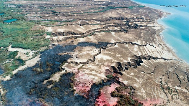 Damage to the nature reserve (Photo: Amir Aloni)