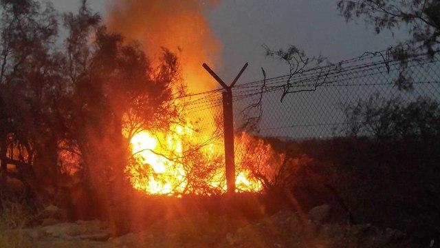 חודשה השריפה בעינות צוקים (צילום: עמיר אלוני, רשות הטבע והגנים)