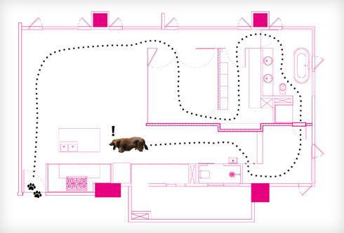 דמותו של כלב התחש המשפחתי מדגימה את התנועה המעגלית בדירה (שרטוט: PhoebeSaysWow Architects Ltd)