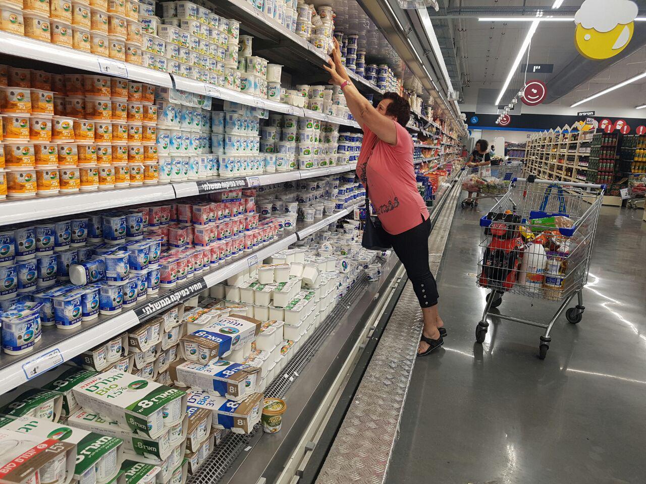 מוצרי חלב של יולו (צילום: מירב קריסטל)