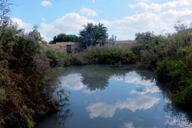 Израильский Лох-Несс: кто водится в Крокодильем ручье