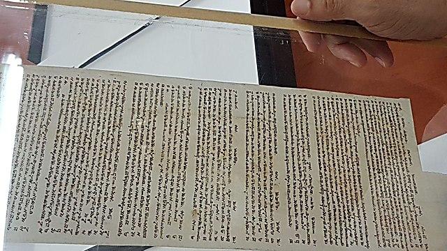 הקרב על ספר התורה השומרוני העתיק (צילום: אסף קמר)
