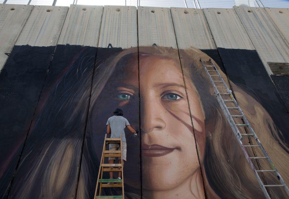 הפכה לסמל של ההתנגדות לכיבוש בחברה הפלסטינית ובעולם. איור של תמימי על גדר ההפרדה (צילום: AP)