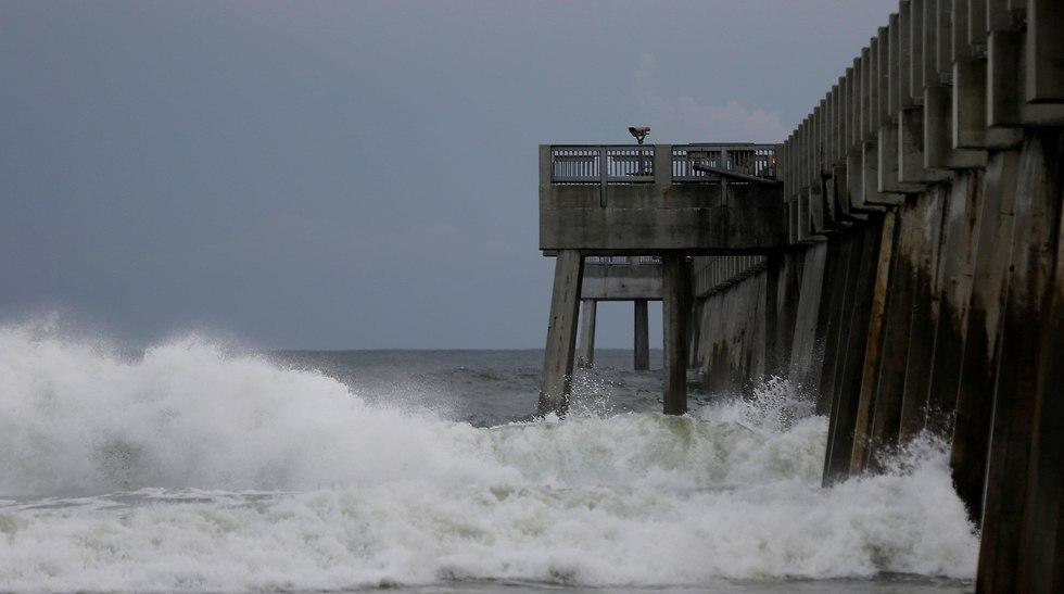 מחכים להוריקן מייקל (צילום: Reuters)