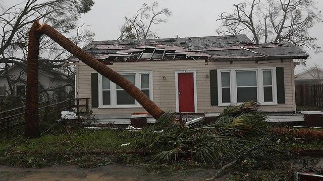 סופה הוריקן מייקל בפלורידה (צילום: AFP)