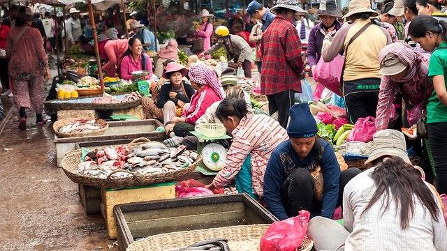 קמבודיה (צילום: shutterstock)
