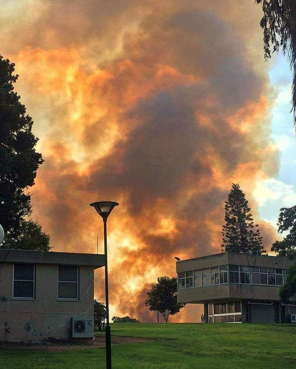 שריפה בקיבוץ זיקים בעוטף עזה (צילום: אתי דויטש)