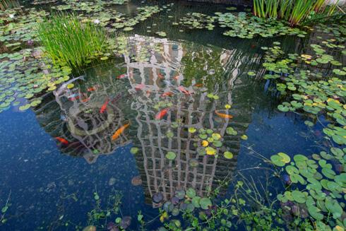 המגדלים משתקפים במי הבריכה (צילום: דור נבו)