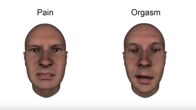 הבעות פנים  (צילום: מתוך youtube)