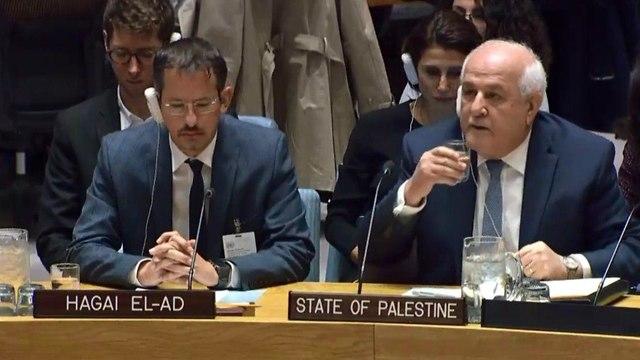 Palestinian Ambassador to the UN (right) and Hagai El-Ad  (Photo: UN TV)
