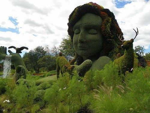"""אמא אדמה מצמחים (צילום: ד""""ר קרן אגאי-שי)"""