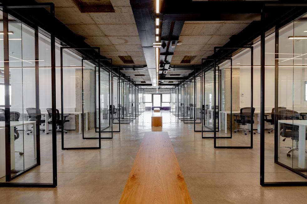 בקומת הכניסה למתחם ''שדרה'' מרכזית, שמשני צידיה תיבות שקופות של משרדים, עם דלתות pivot דקיקות. העיצוב מאופק. ''אוכלוסייה של היי-טק רפואי היא שונה'', מסביר האדריכל. ''רצינו לייצר להם חלל מכבד ומכובד, לא רצינו לעצב גן משחקים, לא גוגל ולא פייסבוק'' (צילום: Miri Nagler)