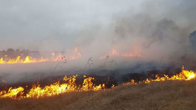 טרור הבלונים שריפה מול קיבוץ מפלסים שבשער הנגב ()