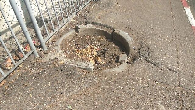 מפגעים בשכונת הדר – זבל ורהיטים ברחוב ומדרכה שבורה ()
