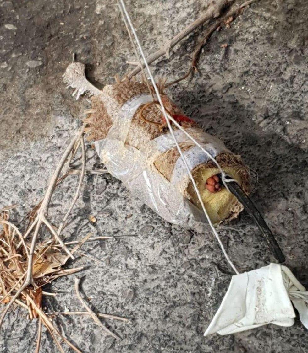 בלון תבערה הגיע לגבעת זאב (צילום: קבוצת כב