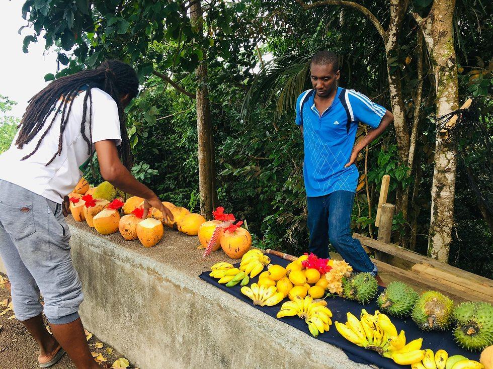 תמיד בנמצא: מגוון גדול של פירות טריים ()
