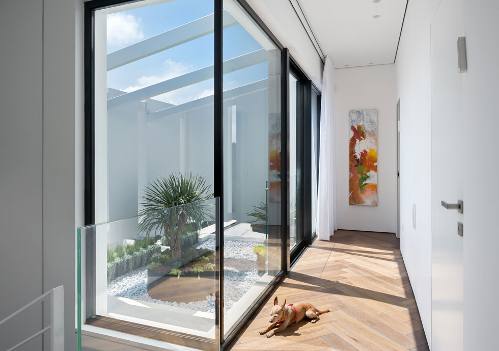 המסדרון שמחבר בין חדרי השינה בקומה העליונה פתוח בחלונות גדולים אל אלמנט ההסתרה ואל הגינה שעל גג החניה (צילום: שי אפשטיין)