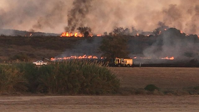 Fire near Kibbutz Or HaNer caused by incendiary balloon from Gaza (Photo: Assaf Gvaram)