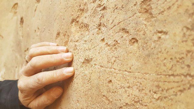 החריתות שהתגלו (צילום: דוידה אייזנברג - דגן, רשות העתיקות)