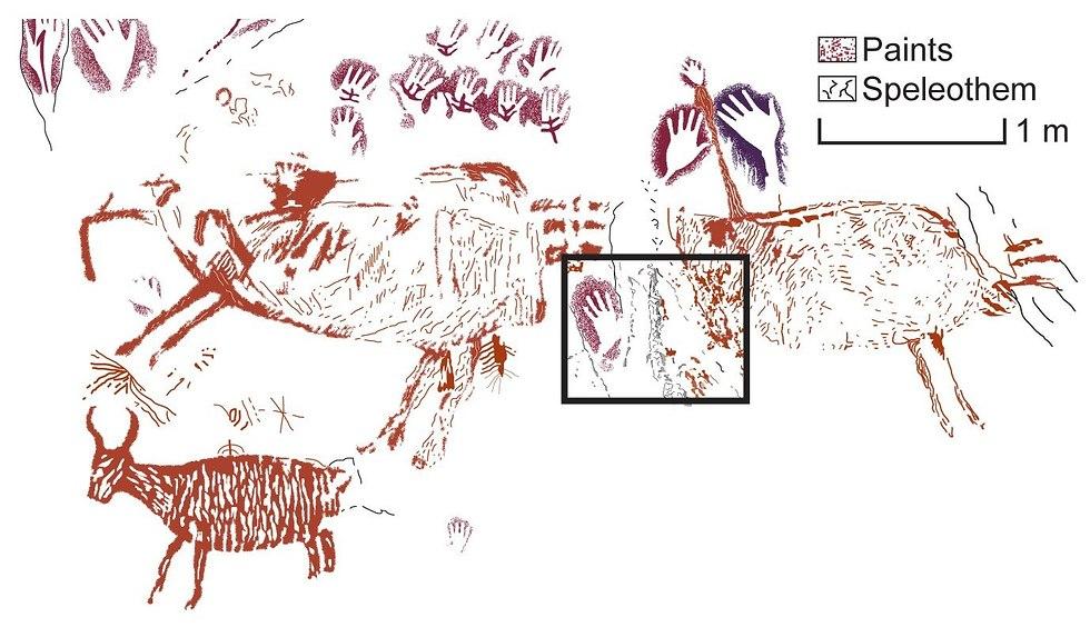 ציורים שהתגלו במערה בבורנאו (צילום: מתוך המחקר)