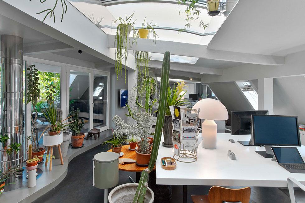 בקומת הגג של הדירה הירוק מוביל, עם שלל סוקולנטים ונוף לשדרה. כאן מוקמו חדר עבודה גדול, מרפסת, חדר אורחים וסאונה (צילום: Eric Laignel)