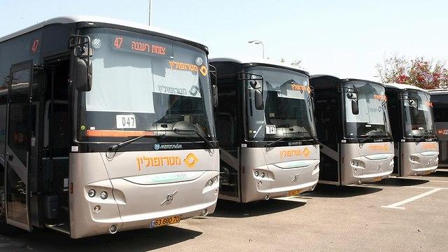 אוטובוסים מטרופולין (צילום: צביקה טישלר)