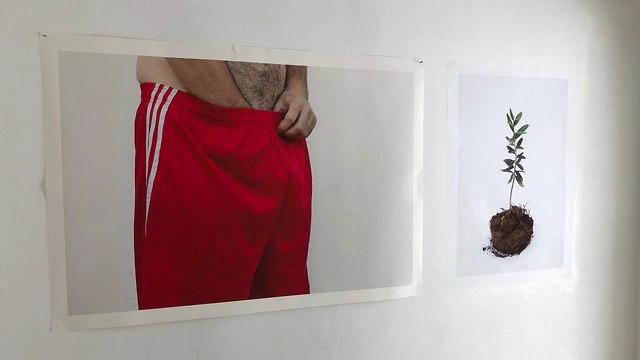 עבודות שמוצגות בגרליה (צילום: עמרי שפירא)