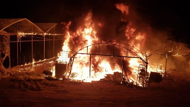 Greenhouse on fire (Photo: Dedi Poled)