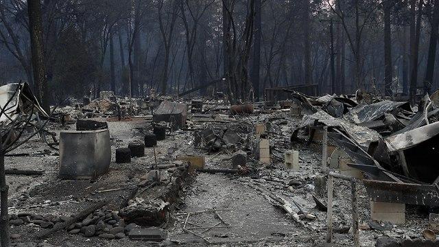 נשקי השריפה בפארדייס (צילום: רויטרס)