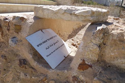 במהלך החפירות נחשף בסיס האמה העליונה (צילום: מיכאל יעקובסון)