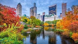 ניו יורק בשלכת (צילום: I Stock)