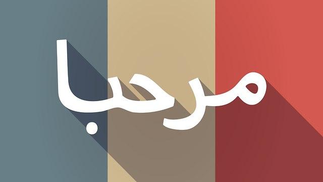 צרפת לימודי ערבית הפורום לחשיבה אזורית (צילום: shutterstock)