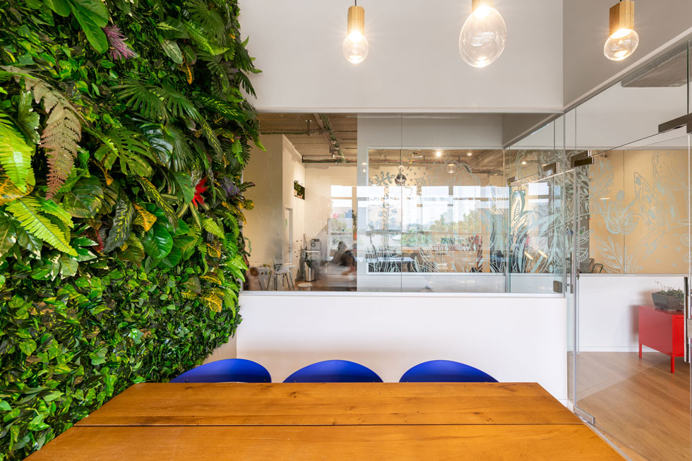 בחדר הישיבות עיצבה רוזן נעים קיר ירוק שופע, שאותו שזרה מצמחיית פלסטיק (צילום: אייל תגר)