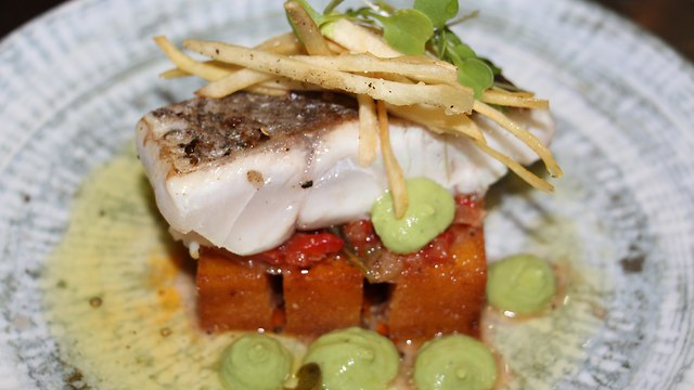 Tamal of grouper fish criollo, with Hogao sauce, green peas and yucca chips (Photo: Sheraton Tel Aviv)
