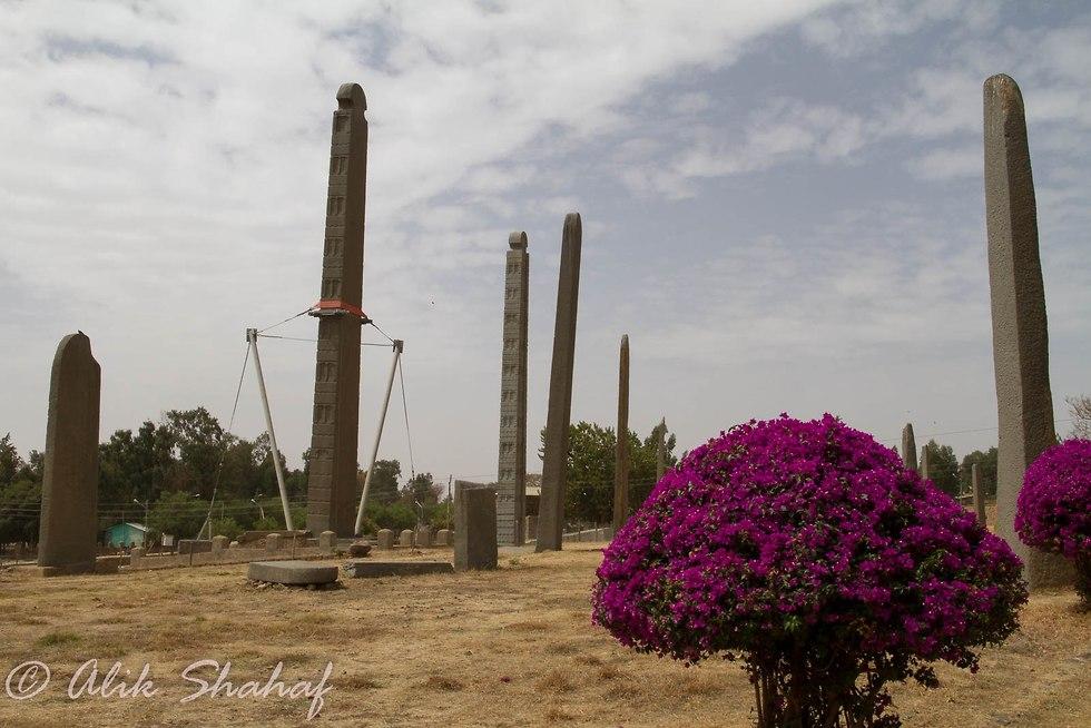 טיול באתיופיה (צילום: אליק שחף )