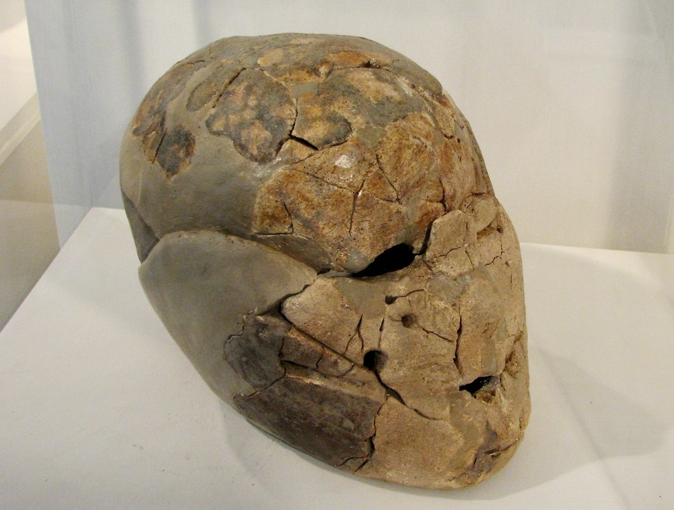 A plastered Skull from the Neolithic site of Beisamun, in the Hula Valley. (Photo: Wikimedia Commons)