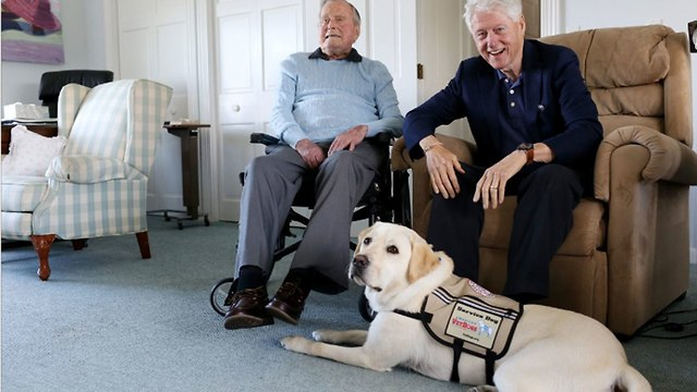 סולי כלב הנחייה של ג'ורג' בוש האב ו ביל קלינטון ()