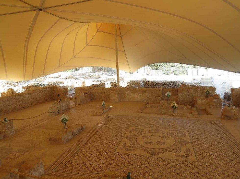 בית הכנסת העתיק בשמורת עין גדי (צילום: מתן בוגומולסקי)