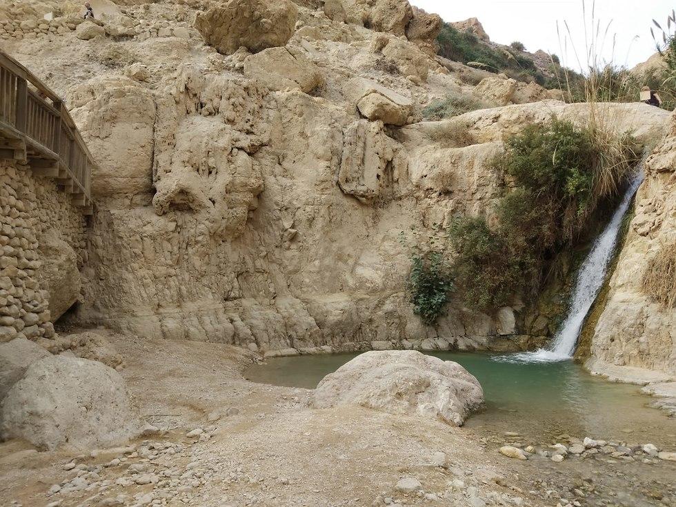 המפל הראשון בנחל דוד בעין גדי (צילום: הגר נחמיאס)