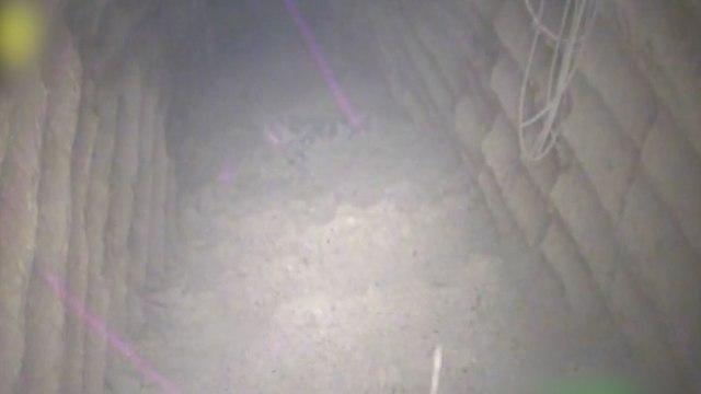 מנהרת הטרור של חיזבאללה (צילום: דובר צה