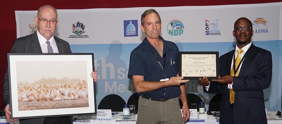 אוהד הצופה בטקס הפרסים בדרום אפריקה (צילום: © UNEP/AEWA Secretariat)