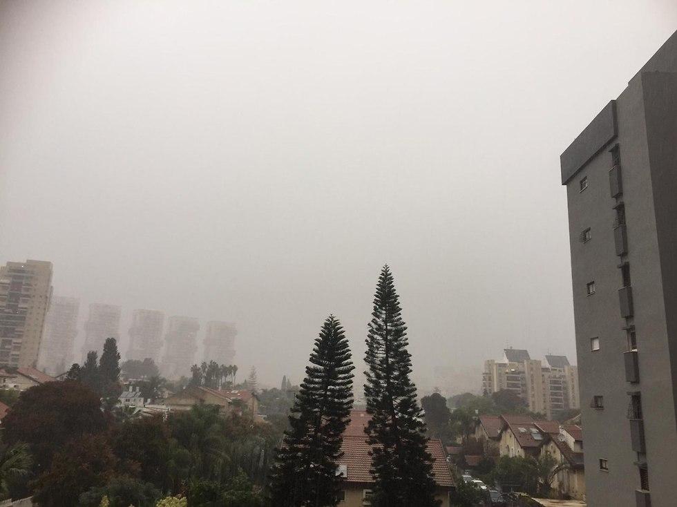 מזג אוויר חורף גשם ראשון לציון (צילום: אורלית אלקלעי)
