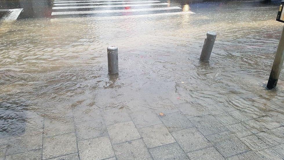 מזג אוויר גשם תל אביב אלנבי (צילום: אייל להמן)