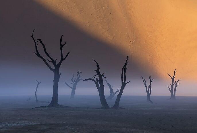 דדווליי, נמיביה (צילום: ארז מרום)